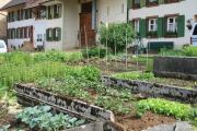 Bauernhäuser mit ihren traditionsreichen Gärten - Genussspaziergang